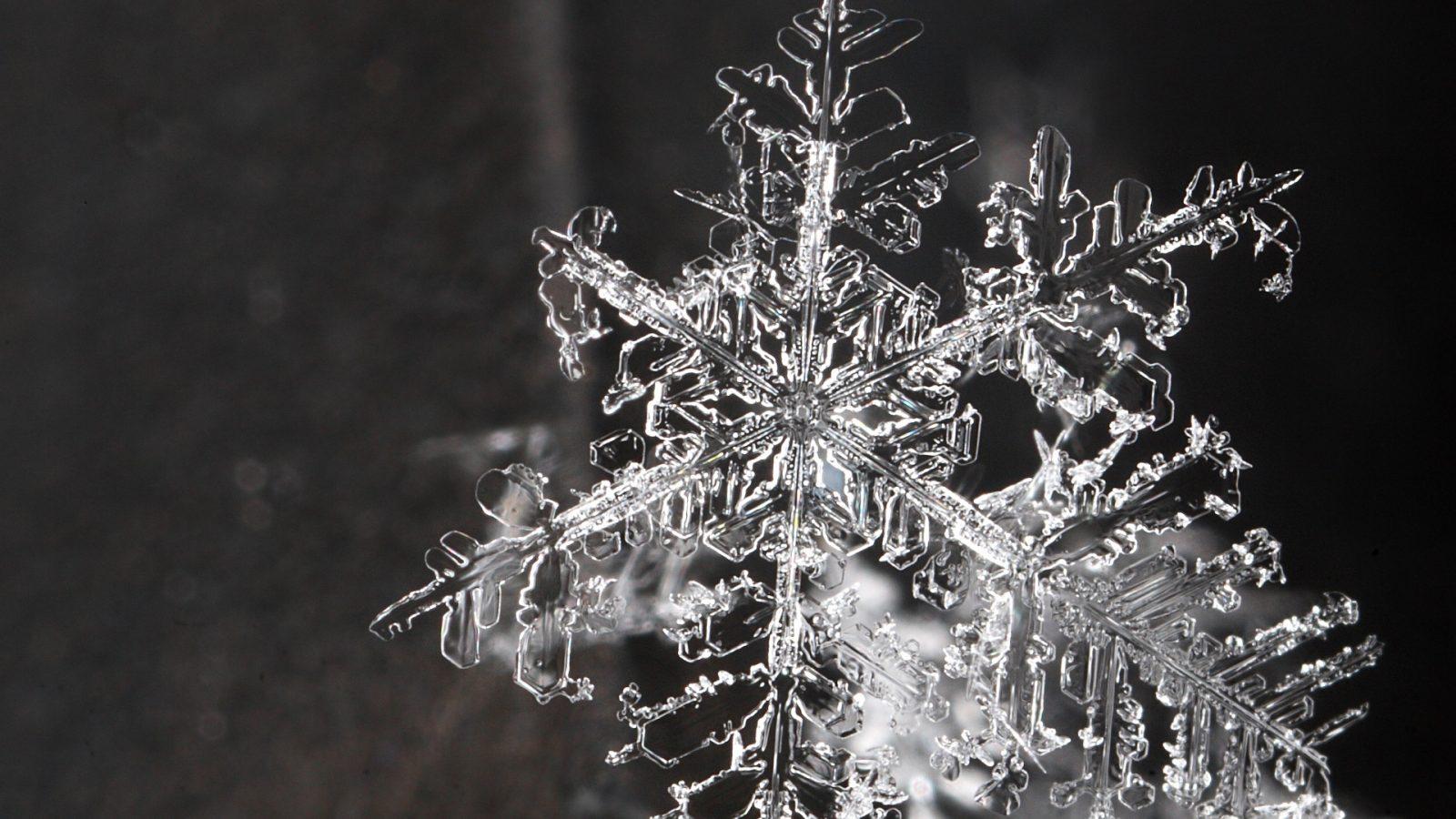 Каждая снежинка уникальна