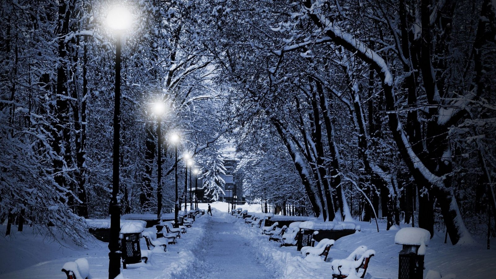 Зимний световой день