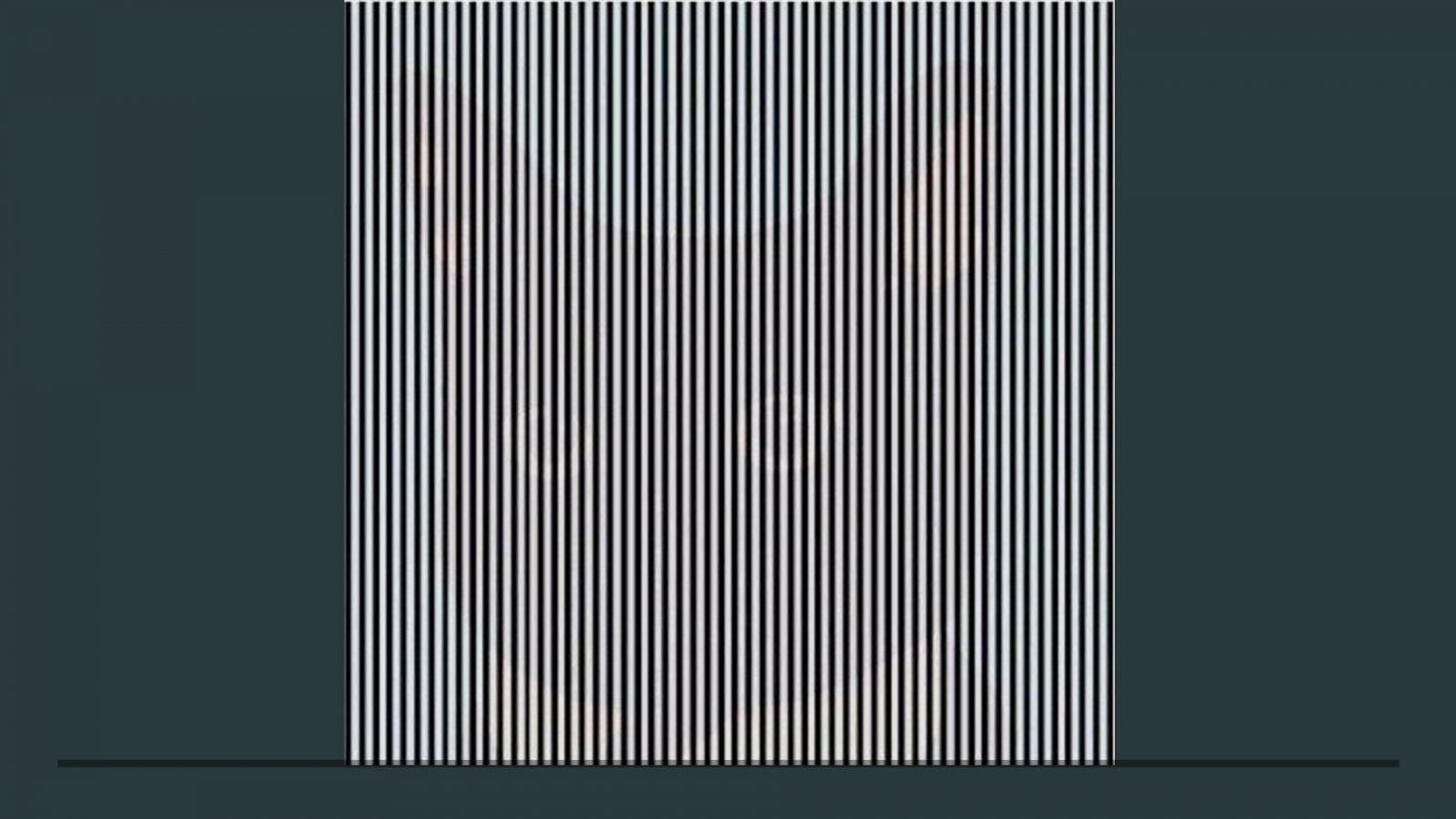 Что вы видите кроме черных и белых полосок