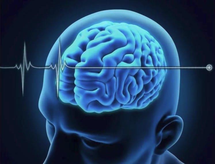 Что происходит с мозгом после смерти?