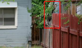 Ответ на загадку на заднем дворе