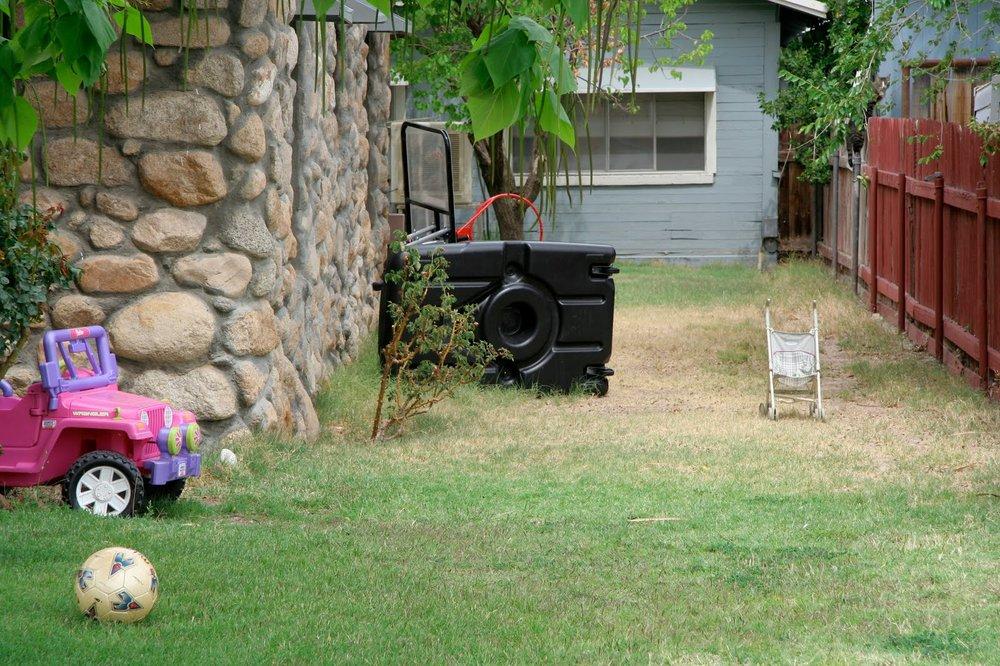 Найди кота на заднем дворе